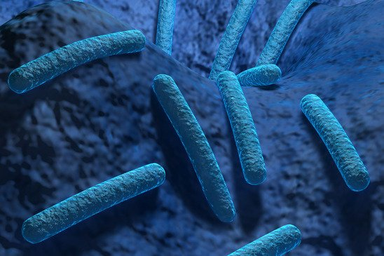 Bupa fined £3m over Legionnaires' death at Essex care home